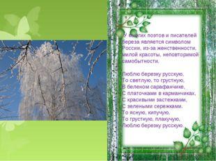 У многих поэтов и писателей береза является символом России, из-за женственн