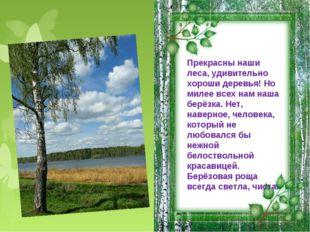 Прекрасны наши леса, удивительно хороши деревья! Но милее всех нам наша берёз