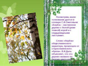 Посмотрим, какое толкование дается в словаре С.И.Ожеговым: «Берёза – лиственн
