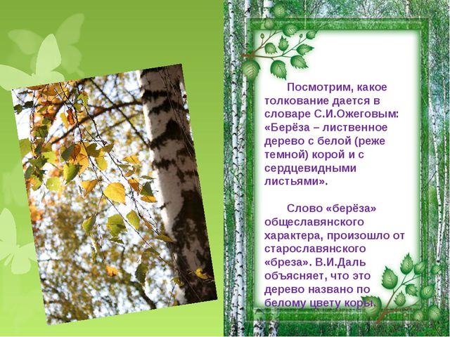 Посмотрим, какое толкование дается в словаре С.И.Ожеговым: «Берёза – лиственн...