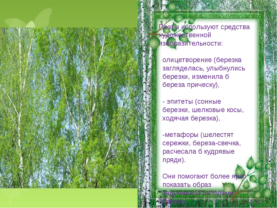 – Поэты используют средства художественной изобразительности: олицетворение...