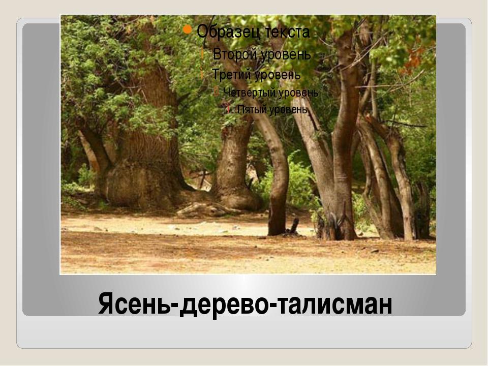 Ясень-дерево-талисман