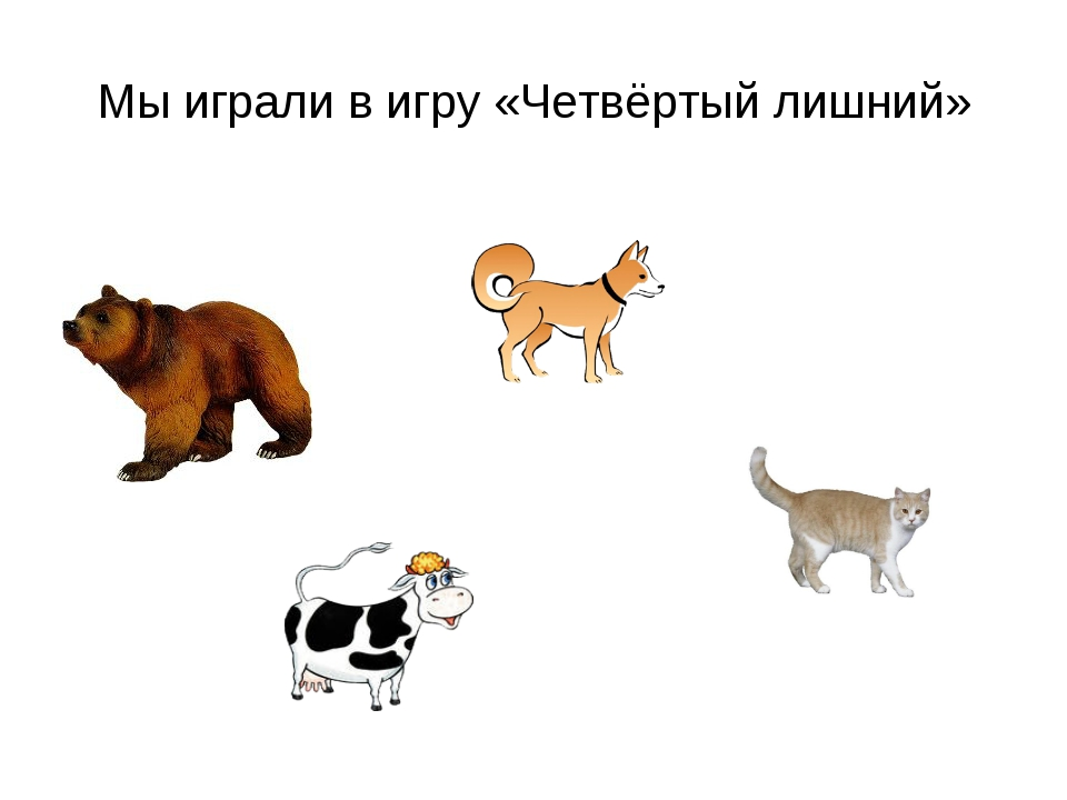 четвертый лишний картинки с домашними животными предложения