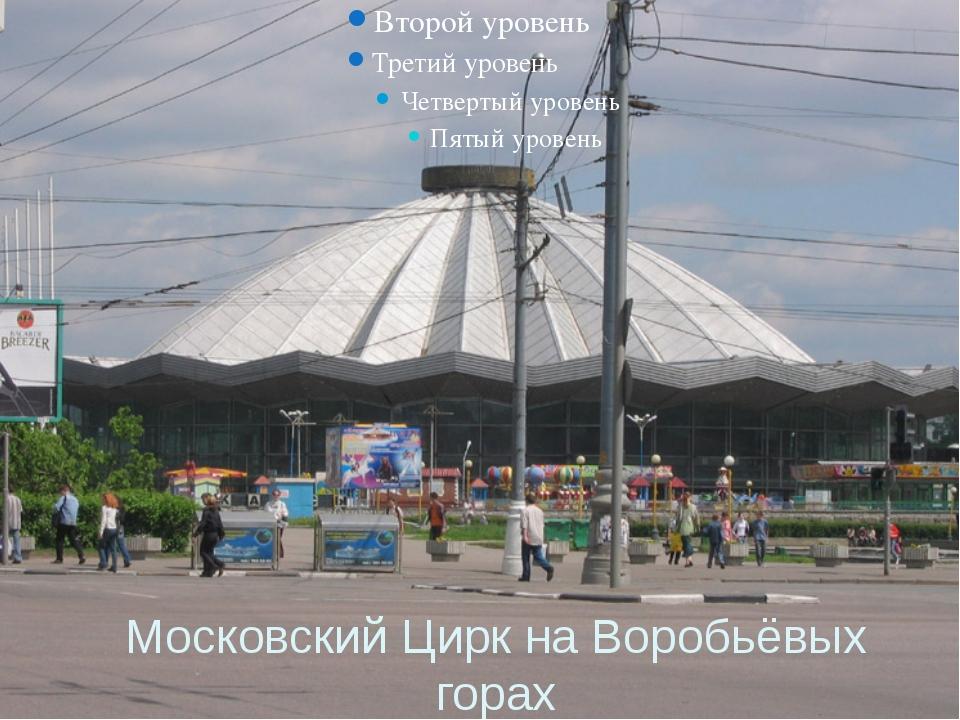 Московский Цирк на Воробьёвых горах