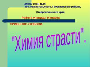 «МКОУ СОШ №19 пос. Нижнезольского, Георгиевского района, Ставропольского кра