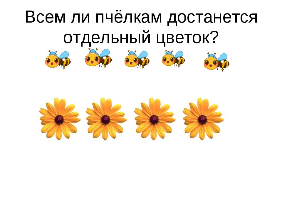 Всем ли пчёлкам достанется отдельный цветок?