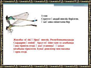 Жауабы: нәзікқұйрық инелік. Республикамыздыда Сырдария өзенінің Арал теңізіне
