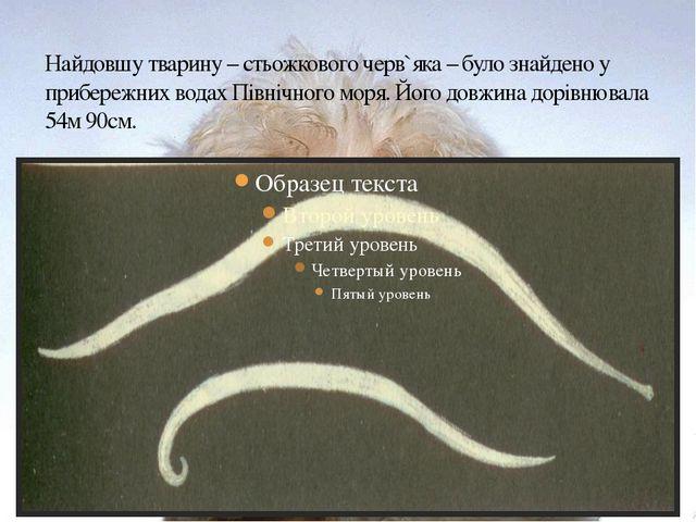 Найдовшу тварину – стьожкового черв`яка – було знайдено у прибережних водах П...