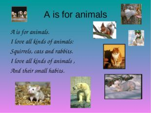 A is for animals A is for animals. I love all kinds of animals: Squirrels, ca