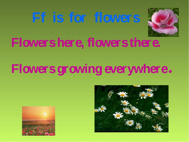 Ff is for flowers Flowers here, flowers there. Flowers growing everywhere.