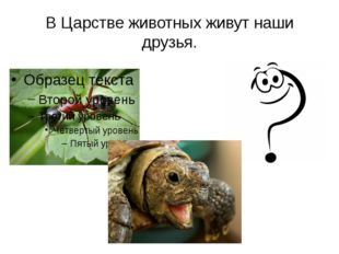 В Царстве животных живут наши друзья.