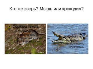 Кто же зверь? Мышь или крокодил?