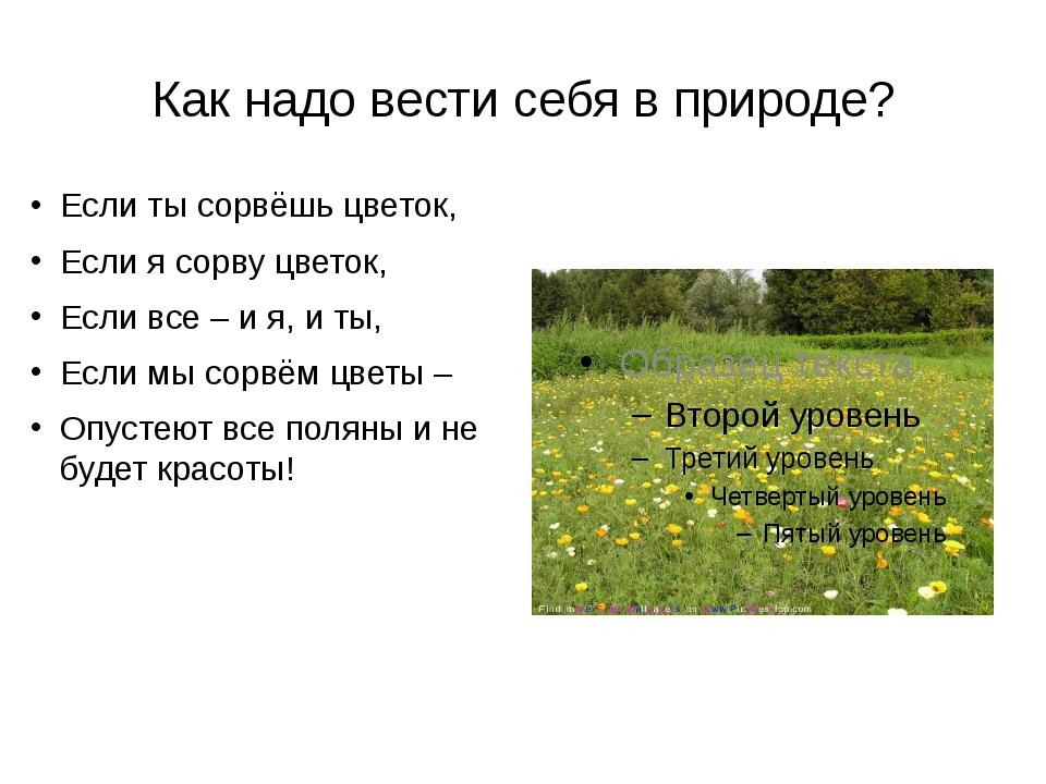 Как надо вести себя в природе? Если ты сорвёшь цветок, Если я сорву цветок, Е...
