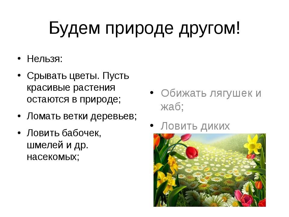 Будем природе другом! Нельзя: Срывать цветы. Пусть красивые растения остаются...