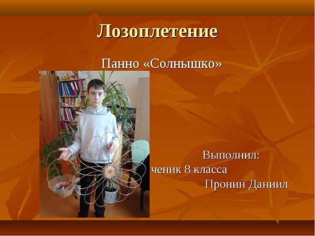 Лозоплетение Панно «Солнышко» Выполнил: ученик 8 класса Пронин Даниил