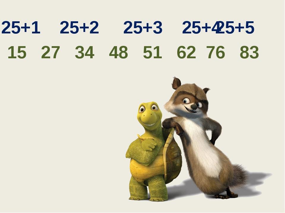 25+1 25+2 25+3 25+4 25+5 15 27 34 48 51 62 76 83