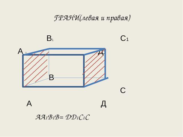 ГРАНИ(левая и правая) В1 С1 А 1 Д1 В С А Д АА1В1В= ДД1С1С