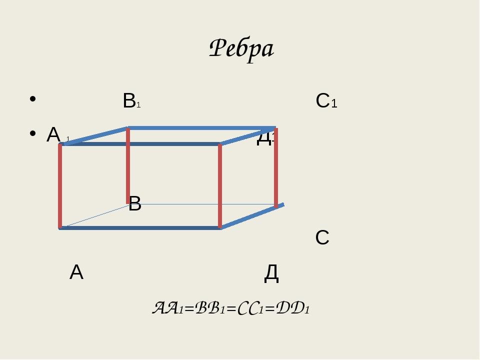 Ребра В1 С1 А 1 Д1 В С А Д АА1=ВВ1=СС1=ДД1