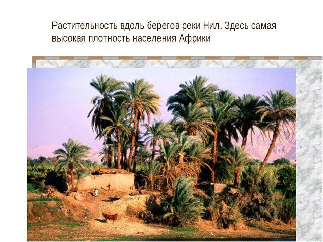 Растительность вдоль берегов реки Нил. Здесь самая высокая плотность населени...