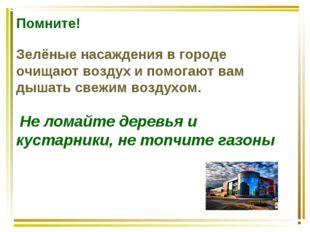 Помните!  Зелёные насаждения в городе очищают воздух и помогают вам дышать с