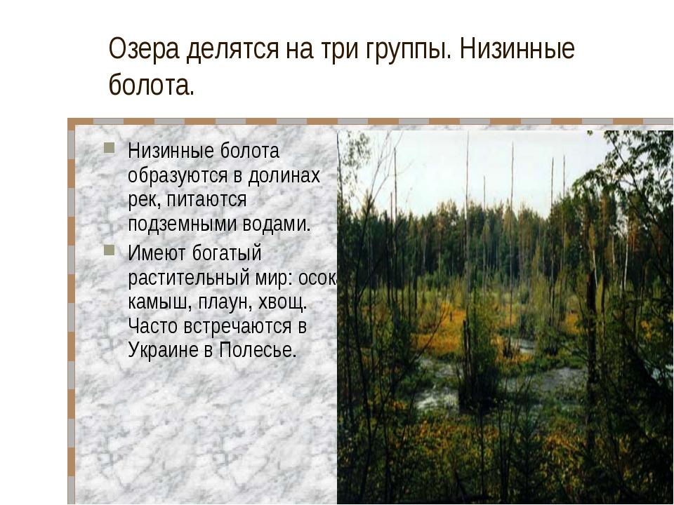 Озера делятся на три группы. Низинные болота. Низинные болота образуются в до...