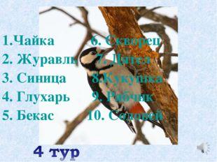1.Чайка 6. Скворец 2. Журавль 7. Дятел 3. Синица 8.Кукушка 4. Глухарь 9. Рябч
