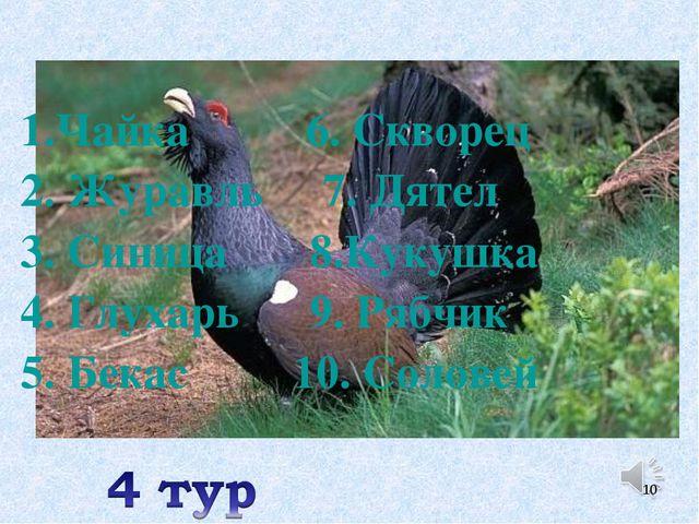 1.Чайка 6. Скворец 2. Журавль 7. Дятел 3. Синица 8.Кукушка 4. Глухарь 9. Рябч...