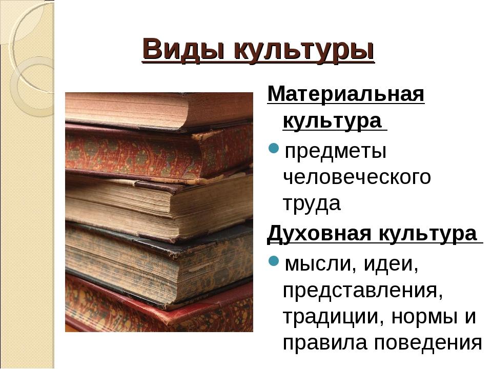 Виды культуры Материальная культура предметы человеческого труда Духовная кул...