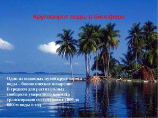 Один из основных путей круговорота воды – биологическое испарение В среднем д