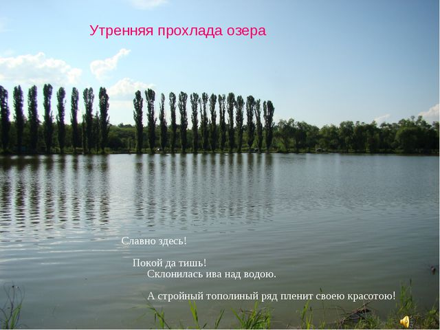 Утренняя прохлада озера Славно здесь! Покой да тишь! Склонилась ива над водою...