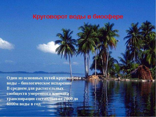 Один из основных путей круговорота воды – биологическое испарение В среднем д...