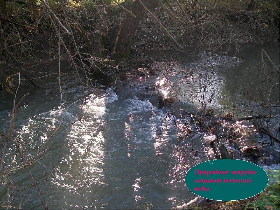 . Природные запруды мешают течению воды.