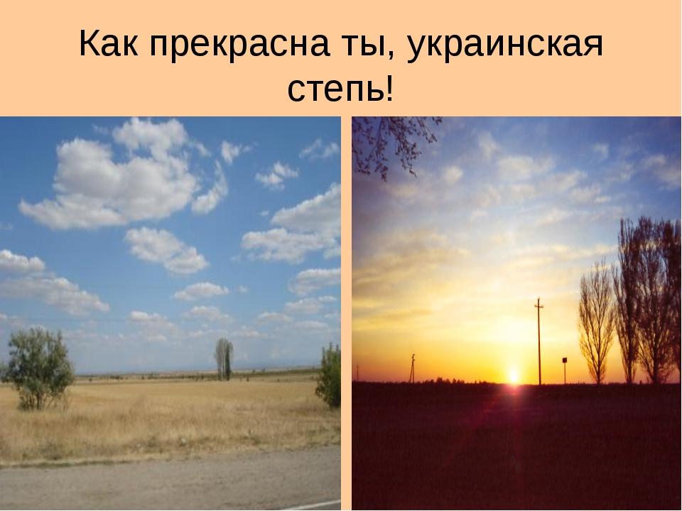 Как прекрасна ты, украинская степь!