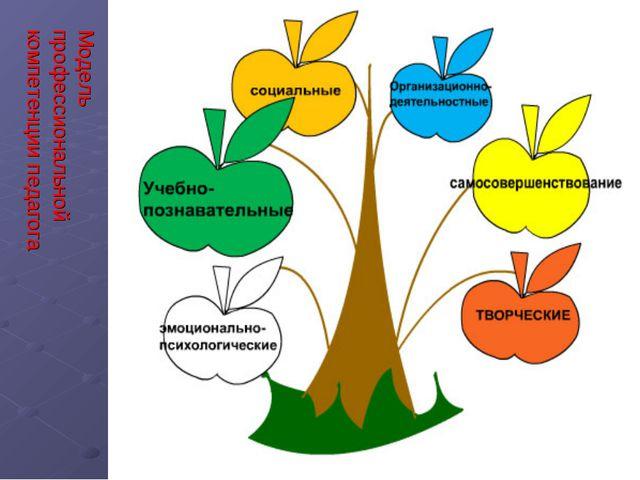 Модель профессиональной компетенции педагога