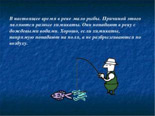 В настоящее время в реке мало рыбы. Причиной этого являются разные химикаты.