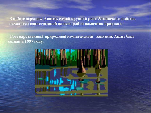 В пойме верховья Ашита, самой крупной реки Атнинского района, находится единс...