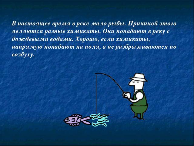 В настоящее время в реке мало рыбы. Причиной этого являются разные химикаты....