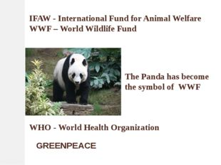 IFAW - International Fund for Animal Welfare WWF – World Wildlife Fund The Pa
