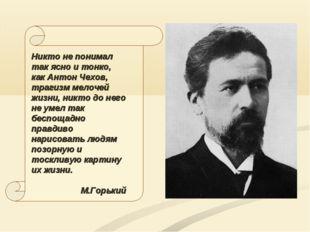 Никто не понимал так ясно и тонко, как Антон Чехов, трагизм мелочей жизни, ни