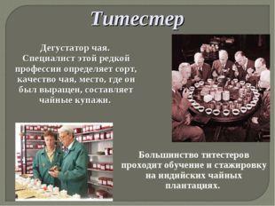 Титестер Дегустатор чая. Специалист этой редкой профессии определяет сорт, ка