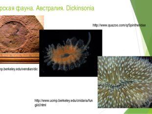 Эдиакарская фауна. Австралия. Dickinsonia http://www.ucmp.berkeley.edu/vendia