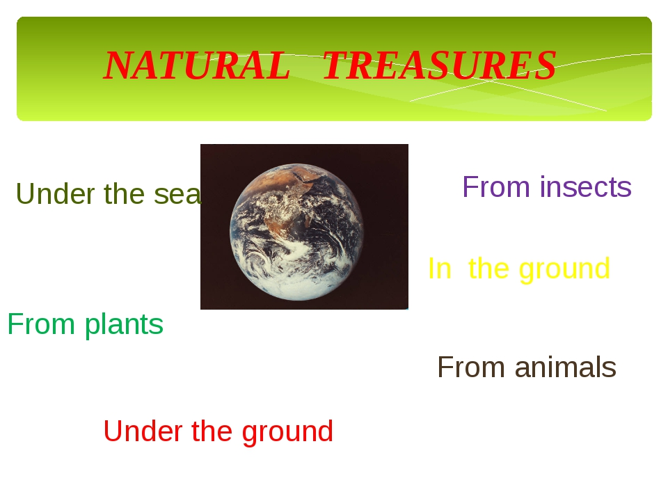 NATURAL TREASURES Under the sea From animals From plants From insects In the...