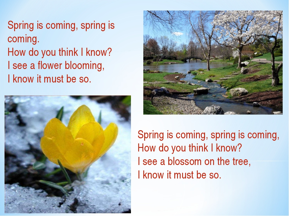 Spring is coming, spring is coming. How do you think I know? I see a flower b...