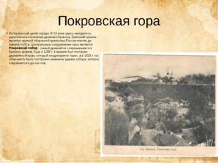 Покровская гора Исторический центр города. В XII веке здесь находилось укрепл