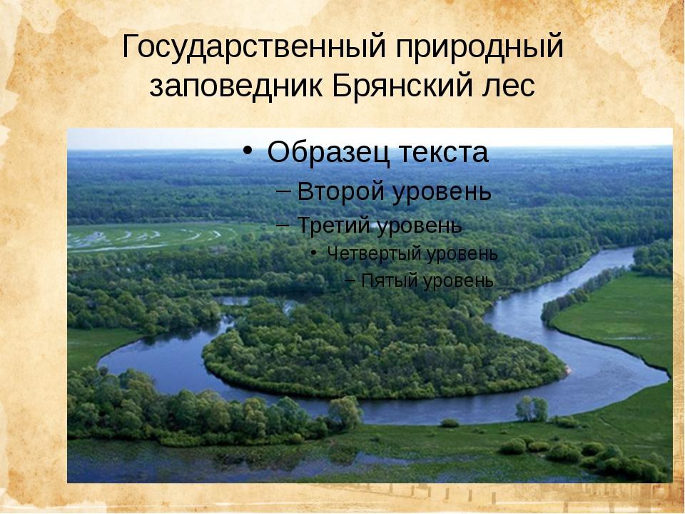 Государственный природный заповедник Брянский лес