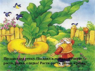 Посадил дед репку. Посадил и говорит:- Расти-расти, репка, сладка! Расти-раст