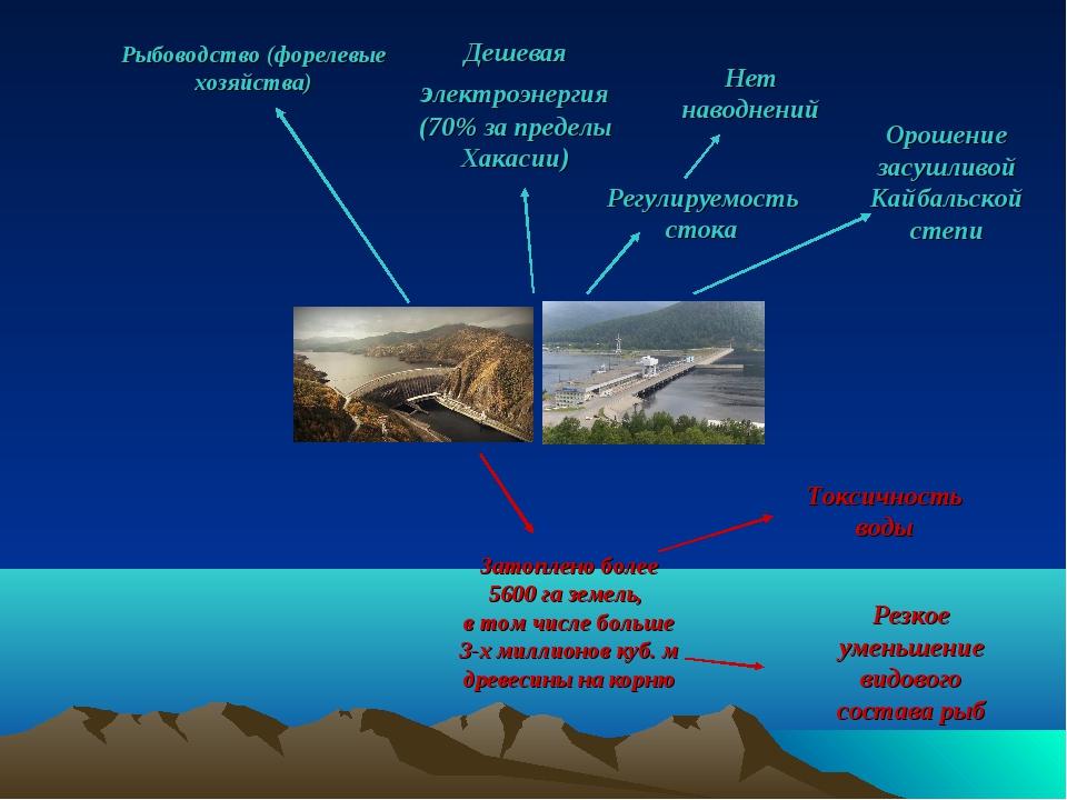 Орошение засушливой Кайбальской степи Регулируемость стока Нет наводнений Рыб...