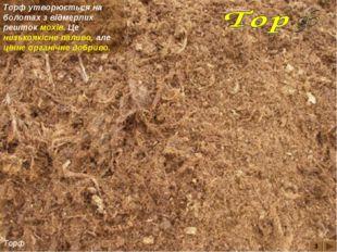 3 Торф Торф утворюється на болотах з відмерлих решток мохів. Це низькоякісне