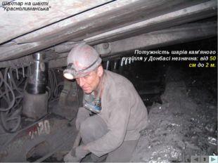 """Шахтар на шахті """"Краснолиманська"""" 3 Потужність шарів кам'яного вугілля у Донб"""