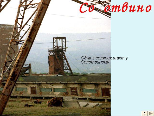 5 Одна з соляних шахт у Солотвиному